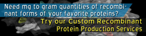 Need mg to gram quantities of recombinant forms of your favorite proteins? Try our Custom Recombinant Protein Production Services
